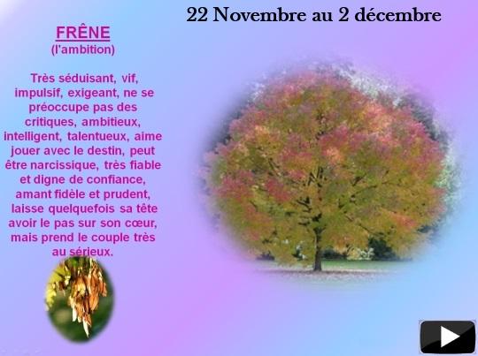 arbre22nov1decs