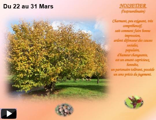 arbre22au31marss