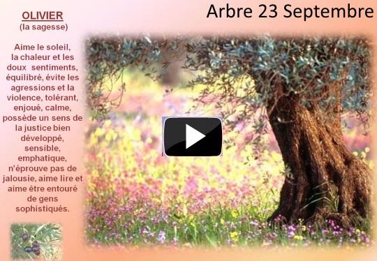 arbre23septembres